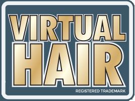 Virtual Hair
